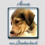 Anna's Bericht...