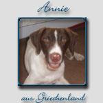 Annie's Bericht...