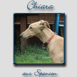 Chiara's Bericht...