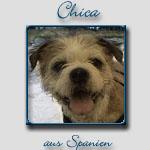 Chica's Bericht...