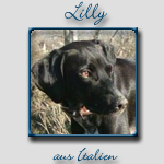 Lilly's Bericht...