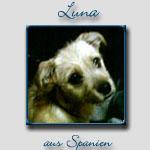 Luna's Bericht...
