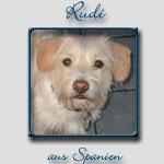 Rudi's Bericht...